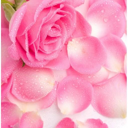 Обновленный косметический бренд для повседневного ухода за кожей с экстрактом болгарской розы My Rose of Bulgaria